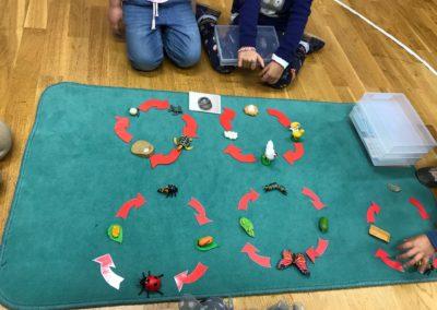 Montessori Natur Kultur
